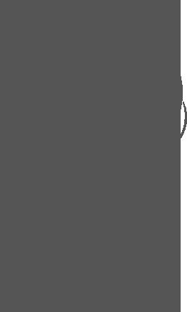 logo-wooly-organic-spielzeug-kuscheltiere-biobaumwolle