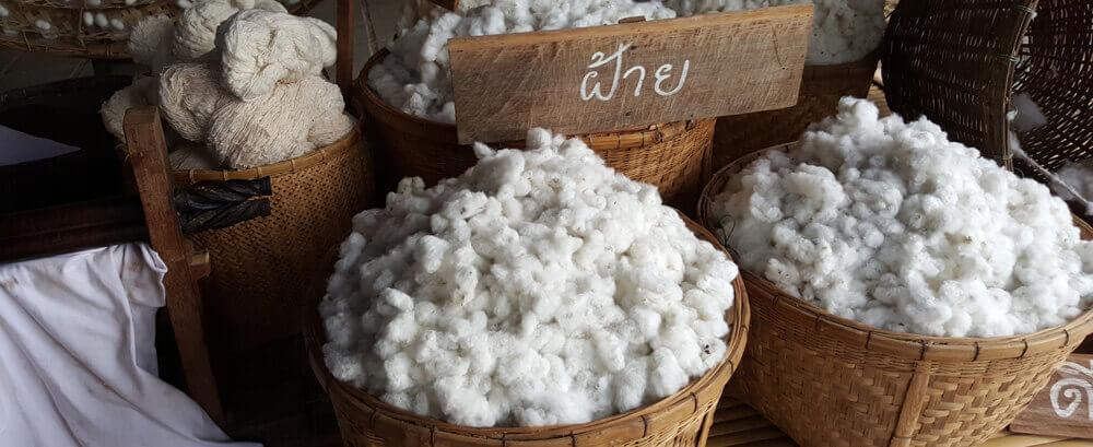 Bio-Baumwolle-Aussehen-roh