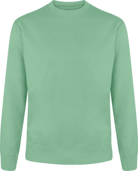 Organic Unisex Sweatshirt - sage green